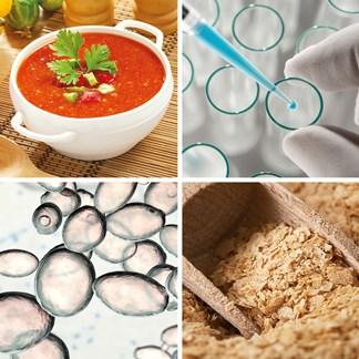 Lallemand Bio-Ingredients Mosaic